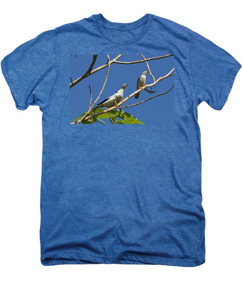 White-headed Starlings Havelock Isl Men's Premium T-Shirt