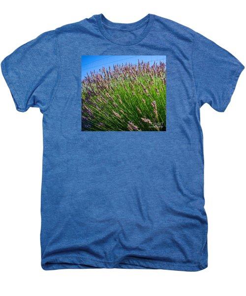 Country Lavender I  Men's Premium T-Shirt