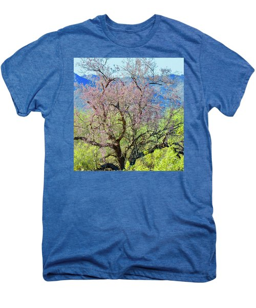 Desert Ironwood Beauty Men's Premium T-Shirt