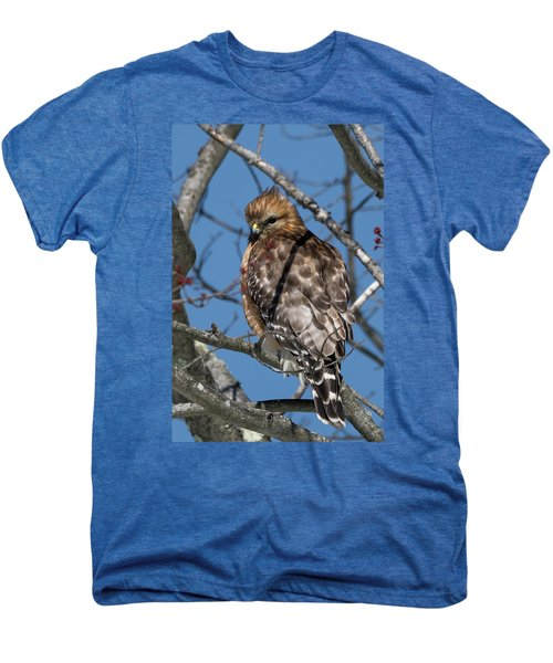 Men's Premium T-Shirt featuring the photograph Red Shouldered Hawk 2017 by Bill Wakeley