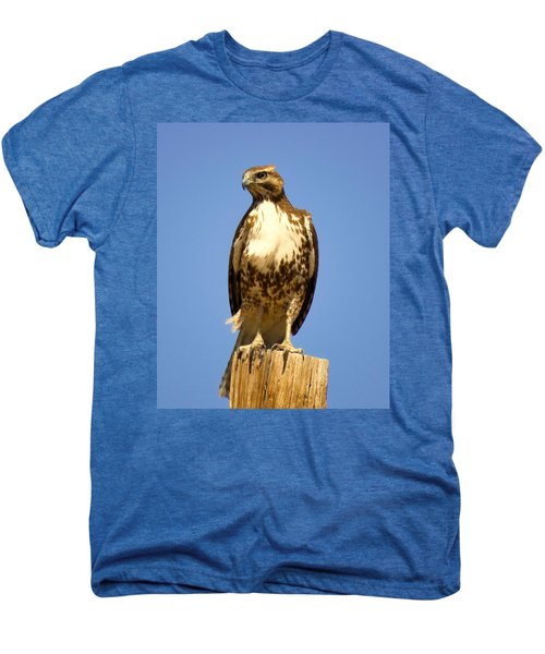 Red-tailed Hawk On Post Men's Premium T-Shirt