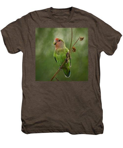 Lovely Little Lovebird  Men's Premium T-Shirt