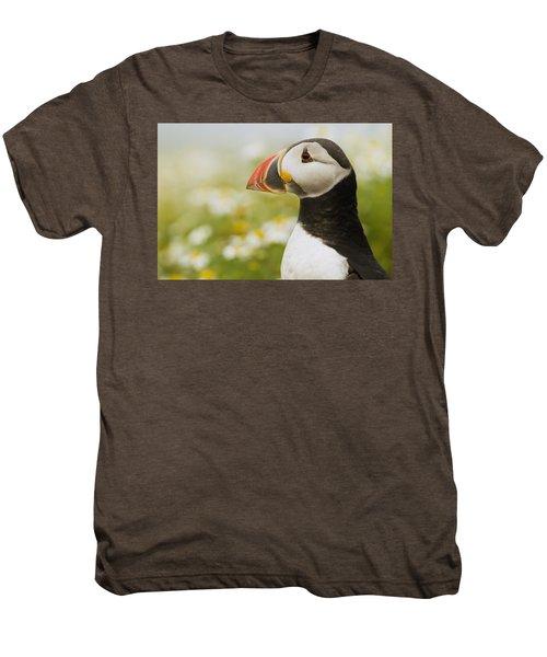 Atlantic Puffin In Breeding Plumage Men's Premium T-Shirt by Sebastian Kennerknecht