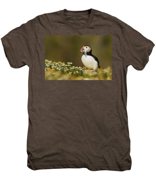 Atlantic Puffin Carrying Fish Skomer Men's Premium T-Shirt by Sebastian Kennerknecht