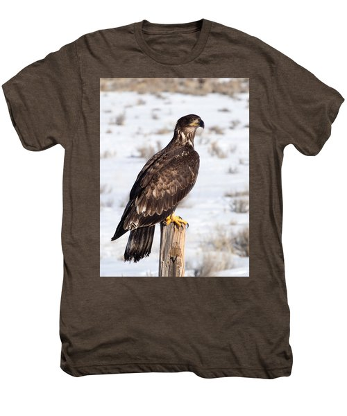 Golden Eagle On Fencepost Men's Premium T-Shirt