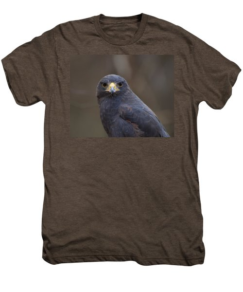 Harris Hawk Men's Premium T-Shirt