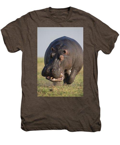 Hippopotamus Bull Charging Botswana Men's Premium T-Shirt