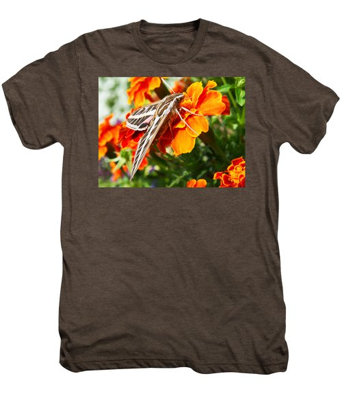 Hummingbird Moth On A Marigold Flower Men's Premium T-Shirt
