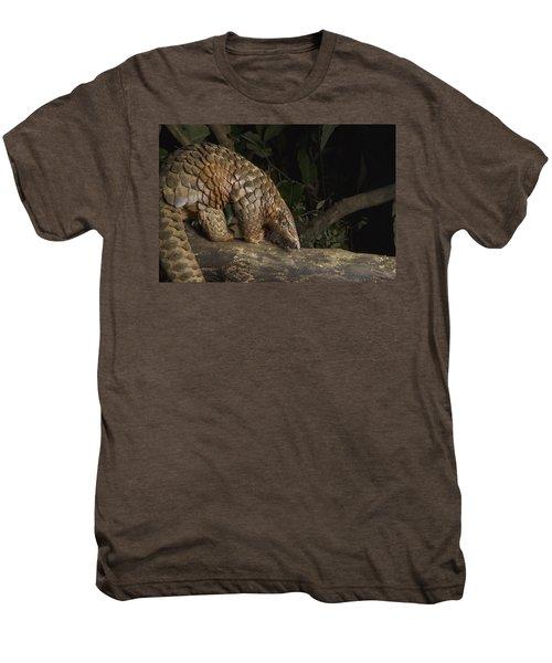 Malayan Pangolin Eating Ants Vietnam Men's Premium T-Shirt by Suzi Eszterhas