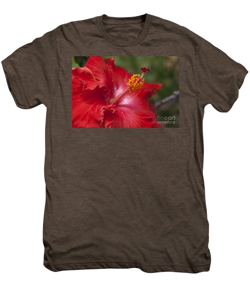 Morning Whispers Men's Premium T-Shirt