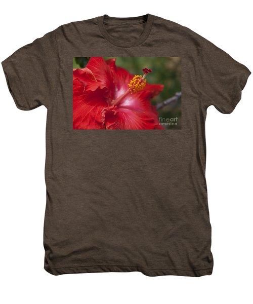Morning Whispers Men's Premium T-Shirt by Sharon Mau