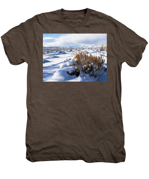Sand Wash Basin In The Winter Men's Premium T-Shirt