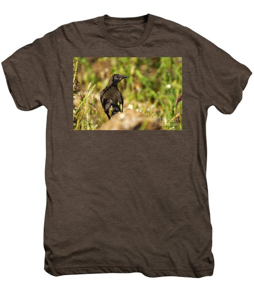 Starling Men's Premium T-Shirt