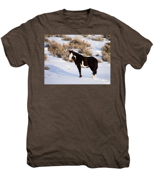Wild Horse Stallion Men's Premium T-Shirt