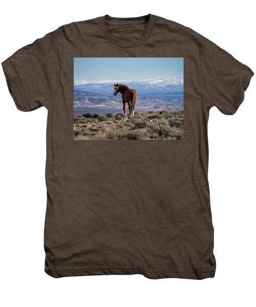Wild Stallion Of Sand Wash Basin Men's Premium T-Shirt