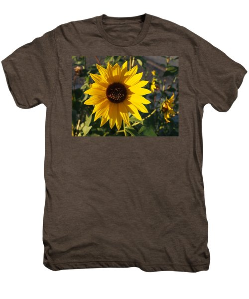 Wild Sunflower Men's Premium T-Shirt