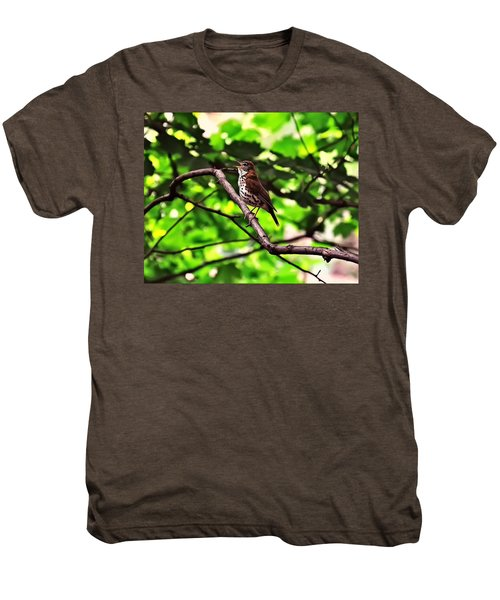 Wood Thrush Singing Men's Premium T-Shirt