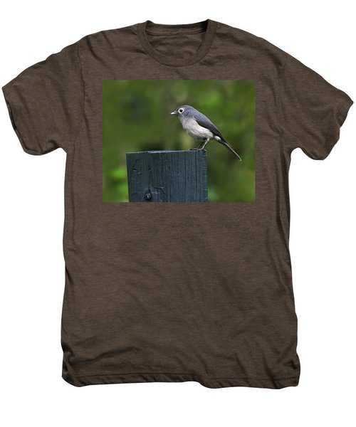 White-eyed Slaty Flycatcher Men's Premium T-Shirt by Tony Beck