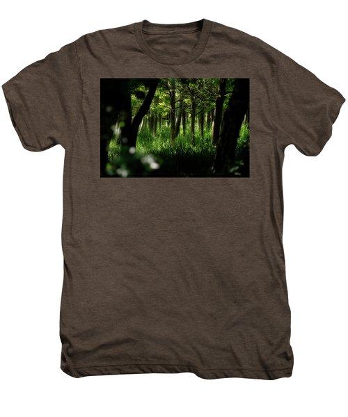 A Walk In The Woods Men's Premium T-Shirt
