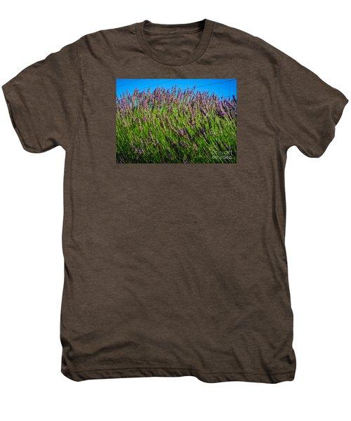 Country Lavender Iv Men's Premium T-Shirt