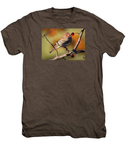 House Finch Men's Premium T-Shirt