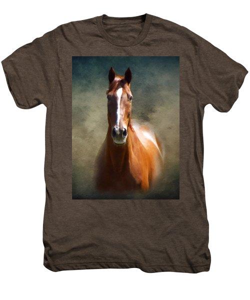 Misty In The Moonlight P D P Men's Premium T-Shirt