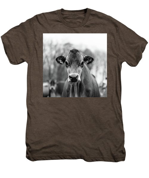 Portrait Of A Dairy Cow In The Rain Stowe Vermont Men's Premium T-Shirt
