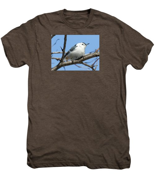 White-breasted Nuthatch Men's Premium T-Shirt