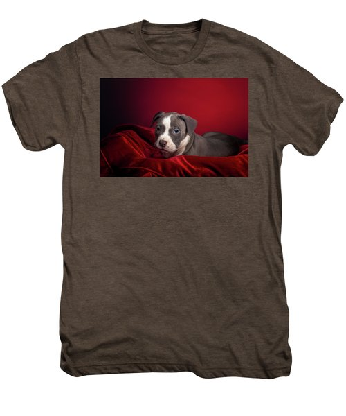 American Pitbull Puppy Men's Premium T-Shirt