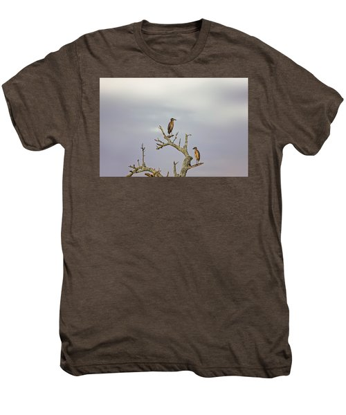 Green Heron Men's Premium T-Shirt