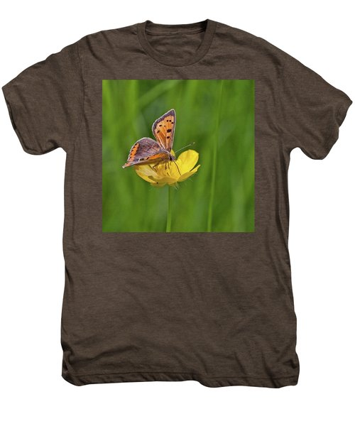 A Small Copper Butterfly (lycaena Men's Premium T-Shirt