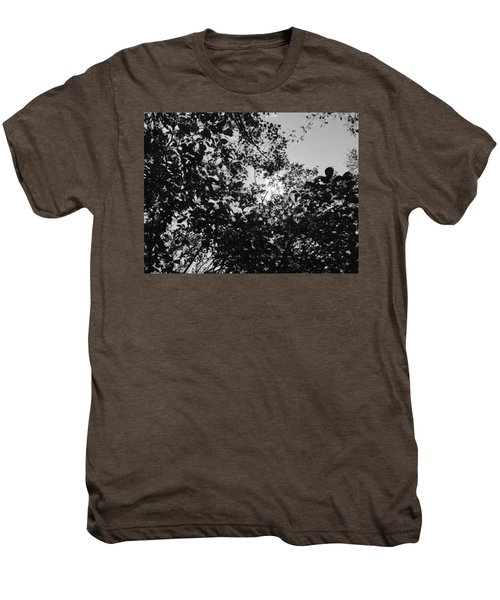Abstract Leaves Sun Sky Men's Premium T-Shirt