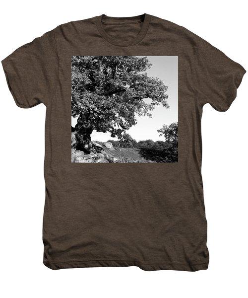 Ancient Oak, Bradgate Park Men's Premium T-Shirt