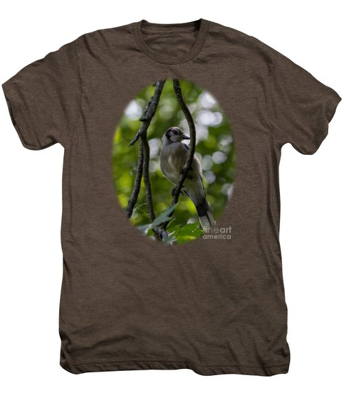 Afternoon Perch Men's Premium T-Shirt by Brian Manfra
