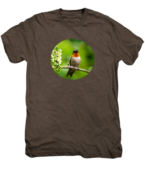 Male Ruby-throated Hummingbird With Showy Gorget Men's Premium T-Shirt by Christina Rollo