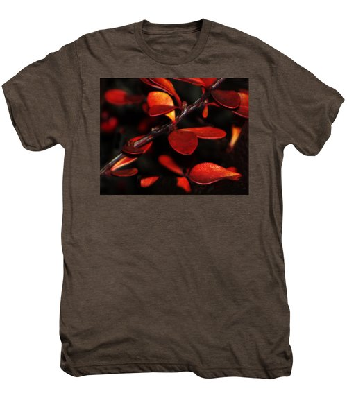 Autumn Details Men's Premium T-Shirt