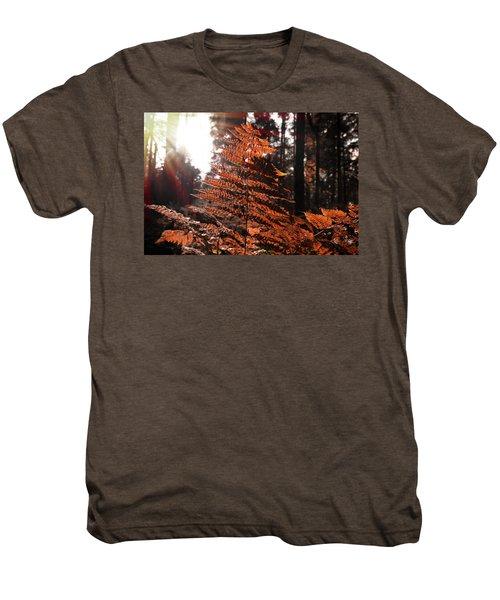 Autumnal Evening Men's Premium T-Shirt