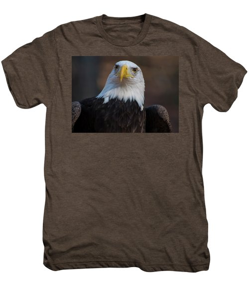Bald Eagle Looking Right Men's Premium T-Shirt