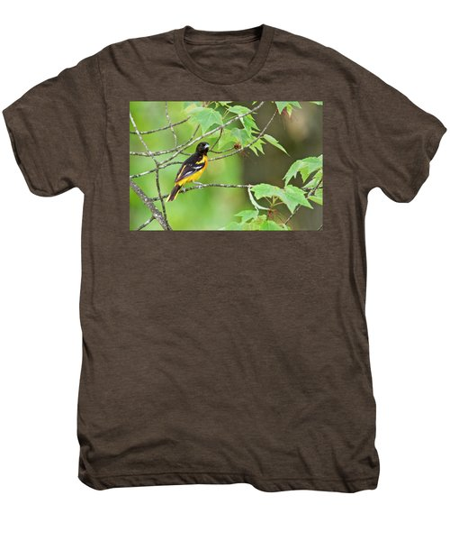 Baltimore Oriole Men's Premium T-Shirt by Michael Peychich