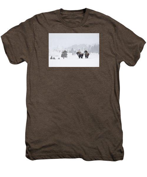 Bison In The Snow Men's Premium T-Shirt