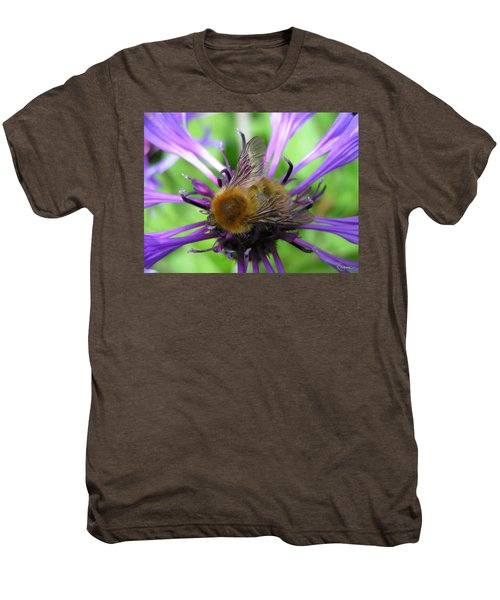Bumblebee In Blue Men's Premium T-Shirt