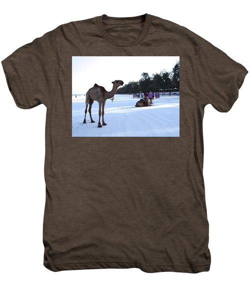 Camel On Beach Kenya Wedding 5 Men's Premium T-Shirt