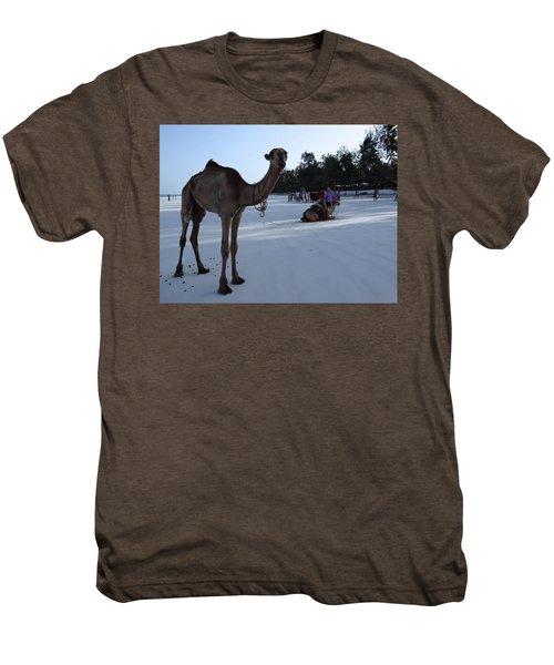 Camel On Beach Kenya Wedding 6 Men's Premium T-Shirt