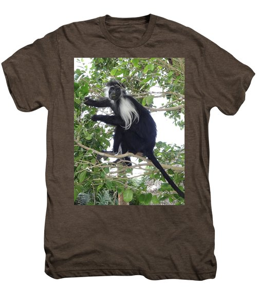 Colobus Monkey Eating Leaves In A Tree Men's Premium T-Shirt