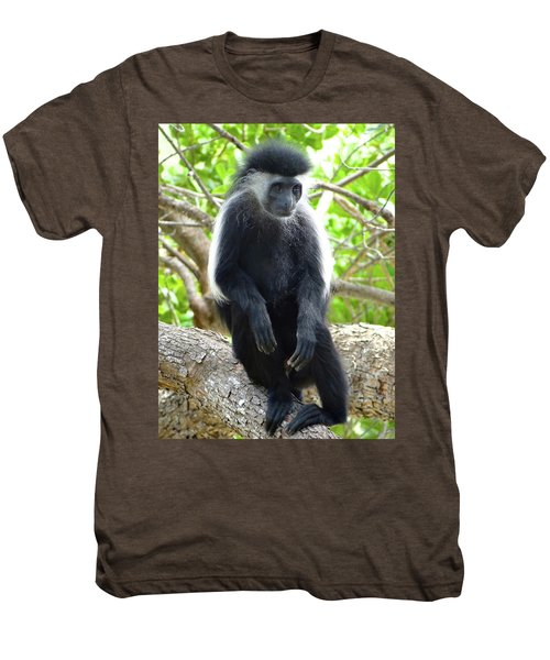 Colobus Monkey Sitting In A Tree 2 Men's Premium T-Shirt