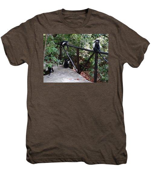 Colobus Monkeys At Sands Chale Island Men's Premium T-Shirt