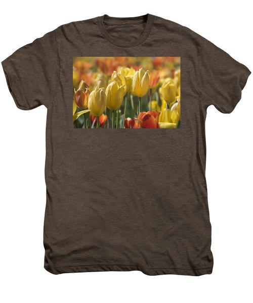 Coming Up Tulips Men's Premium T-Shirt