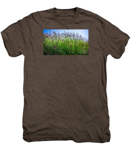 Country Lavender II Men's Premium T-Shirt