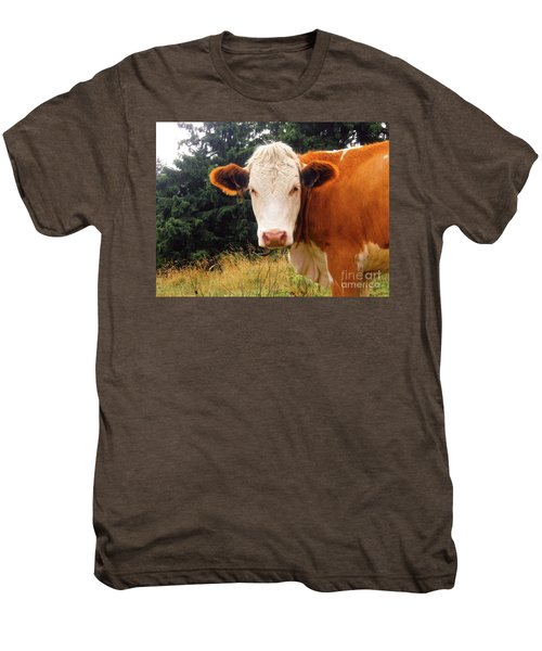 Men's Premium T-Shirt featuring the photograph Cow In Pasture by MGL Meiklejohn Graphics Licensing