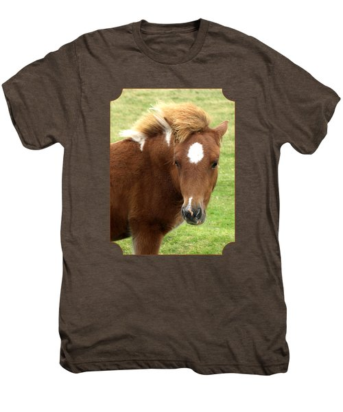 Dartmoor Pony Men's Premium T-Shirt